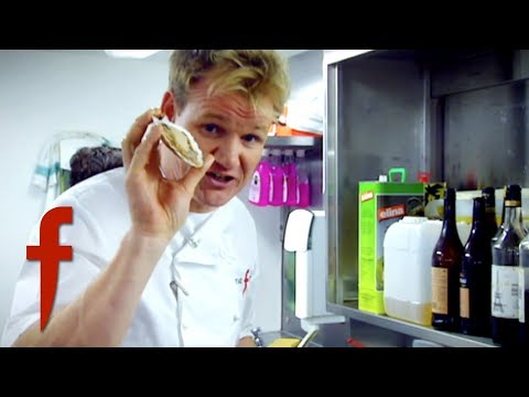 Gordon Ramsay Shows How To Cook  And Plate Scallops   The F Word
