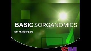 Basic Sorganomics: Making a Fresh Juice Video