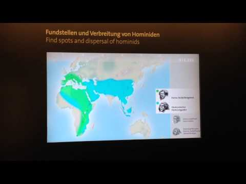 Timeline of find spots and dispersal of hominids; Natural History Museum, Vienna