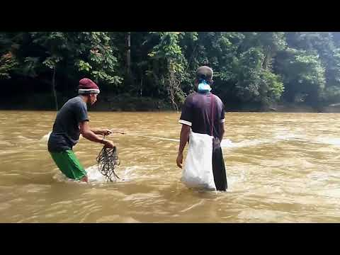 Traditional Fishing: Kehidupan nelayan pedalaman aceh | desa pedalaman (Part - #2)
