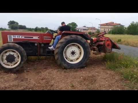 FIAT 70-66 A LAVORO