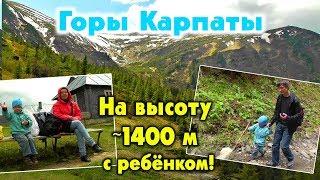 видео поход в горы карпаты