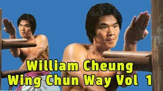 Video Wu Tang Collection - William Cheung Wing Chun Way Vol  1 download MP3, 3GP, MP4, WEBM, AVI, FLV Oktober 2018