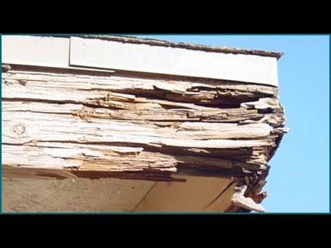 Repairing Rotten Fascia On A House | THE HANDYMAN