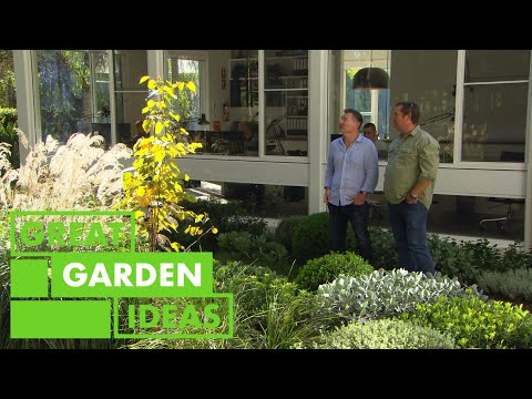 Landscaping Basics for Your Home Garden   GARDEN   Great Home Ideas