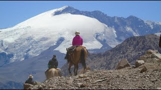 Crossing the Andes Mountain Range by horse, Piuquenes pass