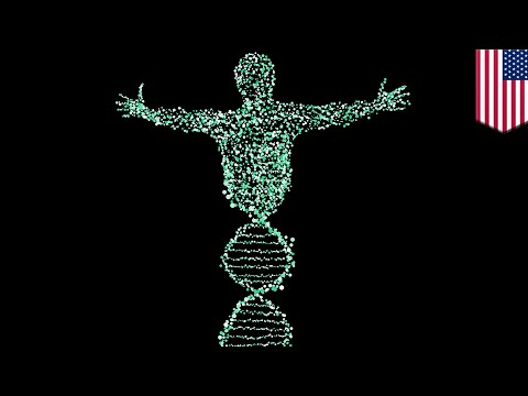Study shows how to rewrite genetic instructions without changing DNA - TomoNews
