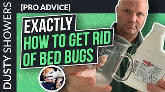[EXACTLY] How To To Get Rid Of Bed Bugs Yourself