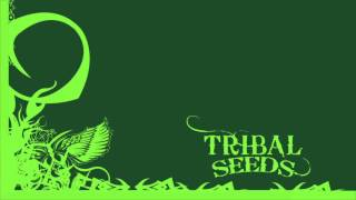 Tribal Seeds - Dark Angel (Official)