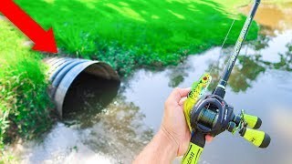 This DRAIN is LOADED w/ GIANT Bass (Frog Fishing)