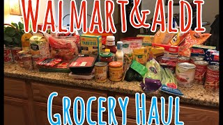 Walmart and Aldi Grocery Haul | Family Of 5