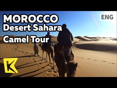 【K】Morocco Travel-Desert Sahara[모로코 여행-사하라사막]사하라사막의 낙타 투어/Desert/Camel/Dune/