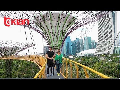 Check-in - Singapori (15 dhjetor 2018)