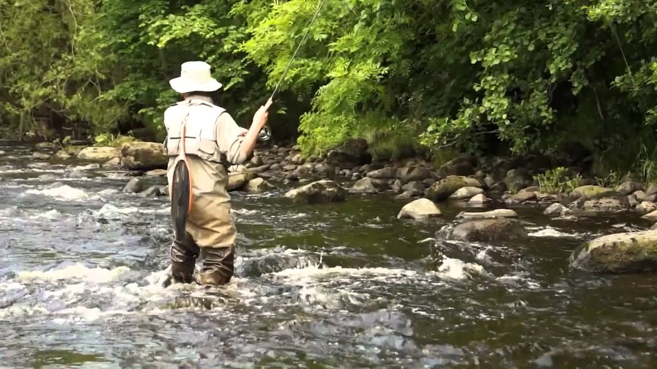River fly fishing techniques youtube for River trout fishing