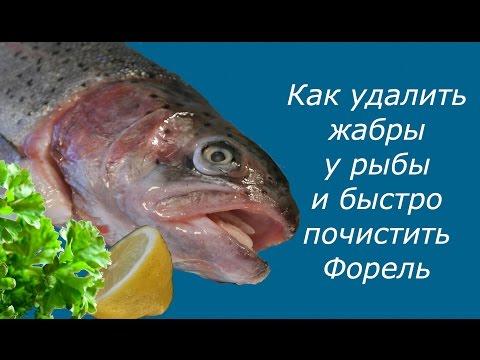 Как убрать жабры у рыбы видео