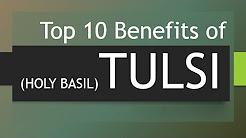 Top 10 Benefits of Tulsi - Amazing Health Benefits of Holy Basil - Holy Basil (Tulsi)