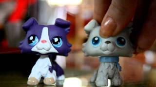 LPS : oh darling, i love you so. ♥ :cover: