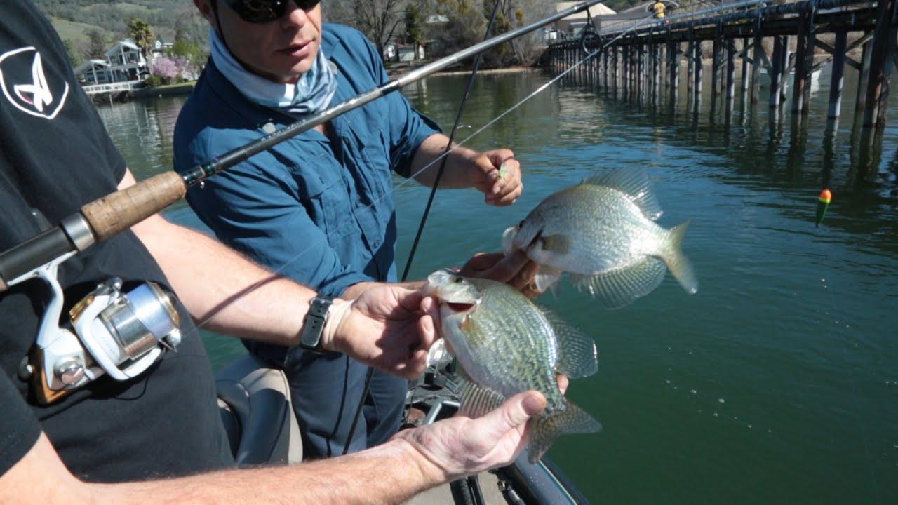 Clear lake crappie bass and the nigiri salmon for Clear lake oregon fishing