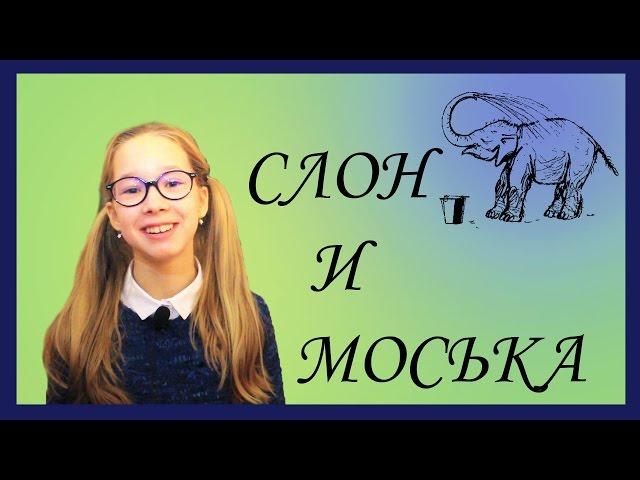 Изображение предпросмотра прочтения – АринаШвабская читает произведение «Слон и Моська» И.А.Крылова