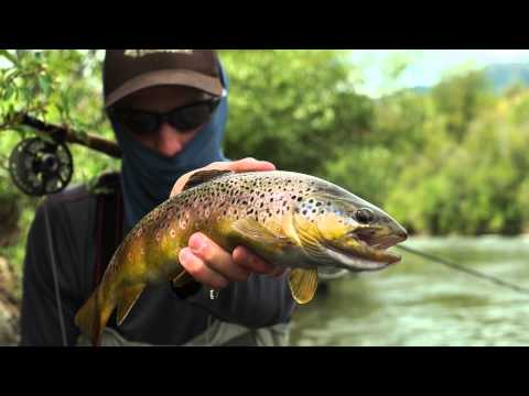 Fly Fishing The Lower Provo River In Utah -