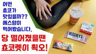 컨셉놀이with스타킹/어떤 쵸코렛이 더 맛있나??에스양이 먹어봤습니다!!/허쉬,킨더,크런키, 과연 에스양의 선택은??