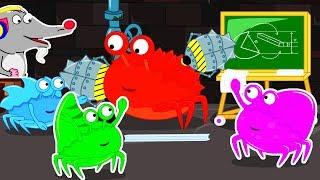 Lion Family 🦀 Rat's Lair Crab-Teacher
