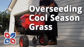 Do My Own Lawn Care - Overseeding Cool Season Grasses