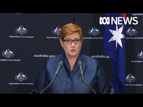 Coronavirus: Marise Payne Announces Rescue Flights For Australians Stranded Overseas   ABC News