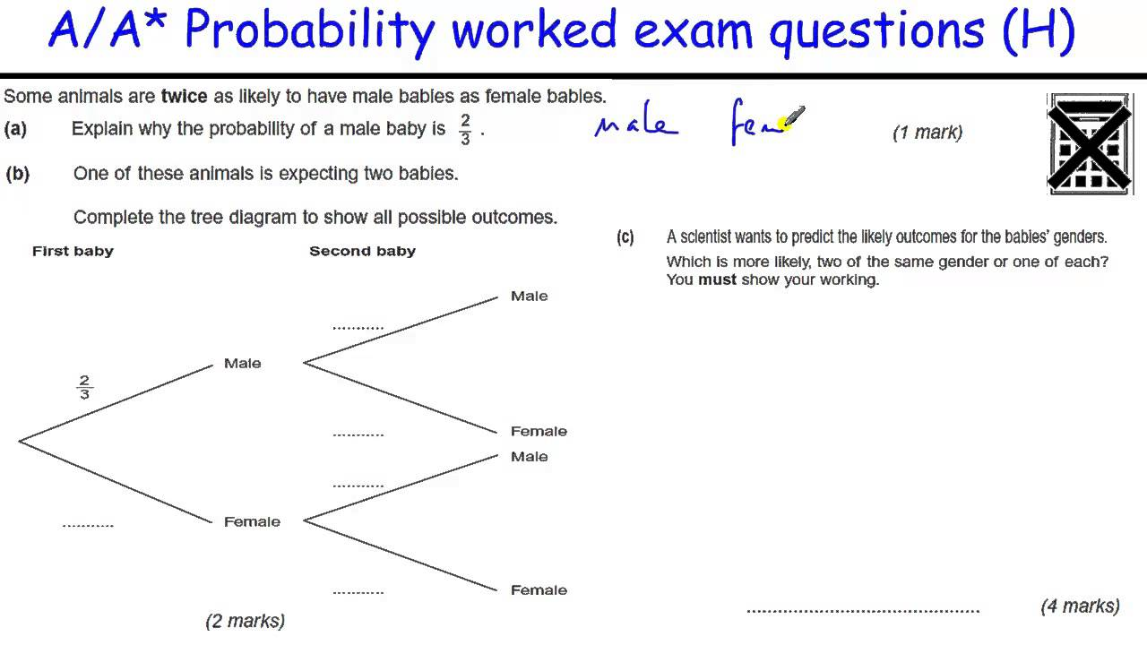 how to do probability a a  gcse maths revision higher level worked    how to do probability a a  gcse maths revision higher level worked exam  tree diagrams  conditional
