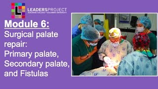 Module 6- Surgical Cleft Palate Repair: Primary, Secondary, VPI Surgery, Fistulas