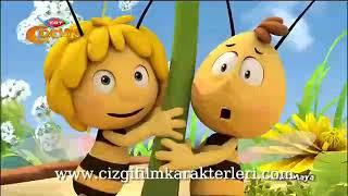 Arı maya Çizgi filmleri türkçe 2017 izle
