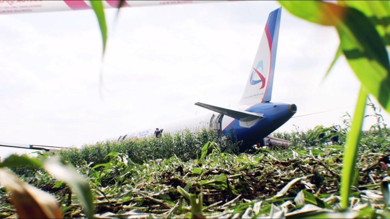 «Снимаю шляпу перед пилотами»: эксперты оценили действия экипажа А321 при аварийной посадке