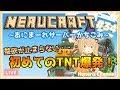 【Minecraft】TNT爆破祭りだー!!!【因幡はねる / あにまーれ】