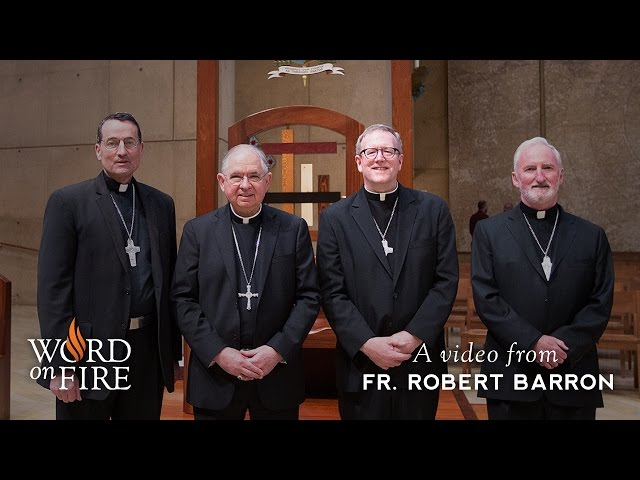 What Will Happen to Word on Fire? Fr  Barron on His