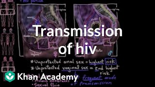 Transmission of HIV | Infectious diseases | NCLEX-RN | Khan Academy