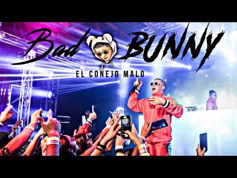 Bad Bunny - Nashville, TN Bucanas 2017