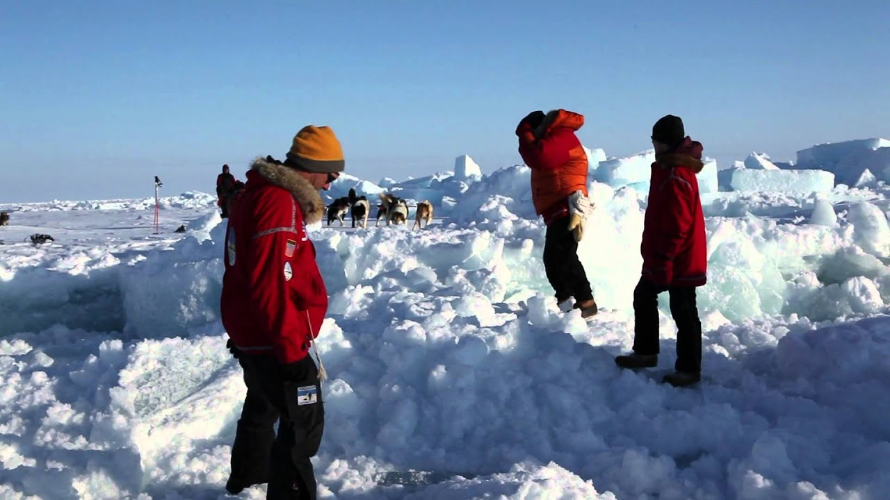 arctic explorers Find great deals on ebay for polar explorers and polar goggles shop with confidence.