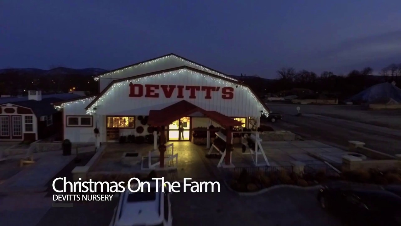 Devitts Christmas On The Farm 2020 Christmas on the Farm – Exclusively at Devitts Nursery   YouTube