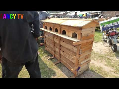 Simple pigeon house   Pigeon Coop made of wood and bamboo