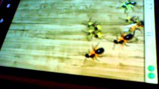 Aplasta hormigas omar