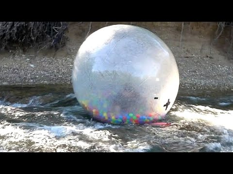Floating Down The Creek In A Giant Hamster Ball - Dylan Ayres