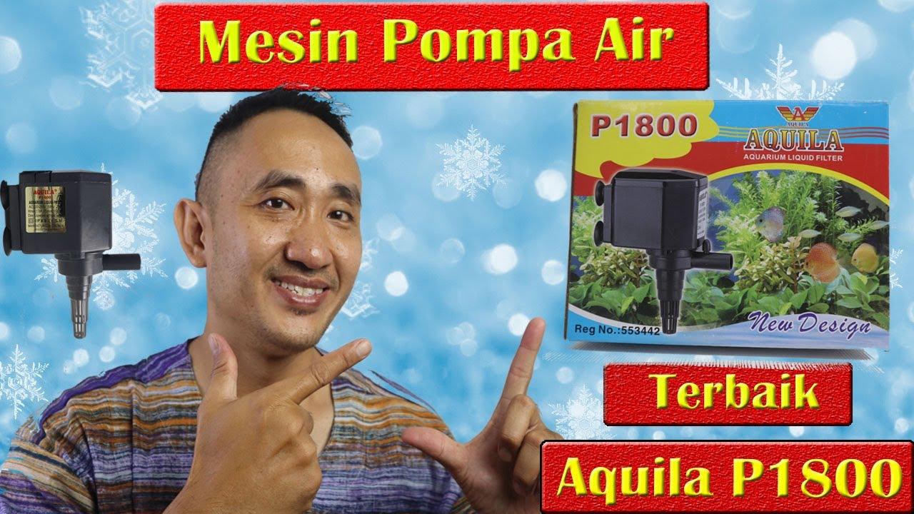 Review Mesin Pompa Air Aquarium Aquila P 1800 Terbaik ...