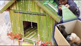 How to Build AMAZING puppy/dog home using Bamboo