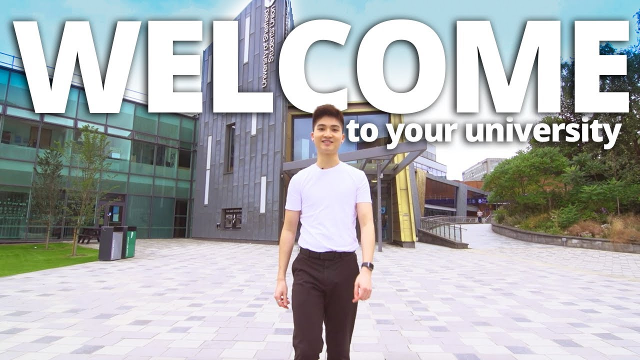 Download Welcome to the University of Sheffield