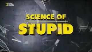 Научные глупости 4