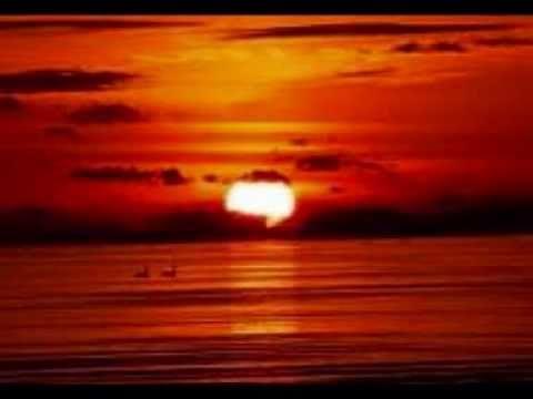 Island In The Sun - Ben Wainetti