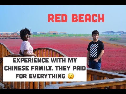 Panjin Red Beach China 盤錦紅海灘 - My Chinese family in China. || Life of a foreigner in china