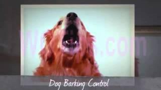 How To Train Dog Not To Bark / Dr. Dog Smartsystem / Dog Barking Control