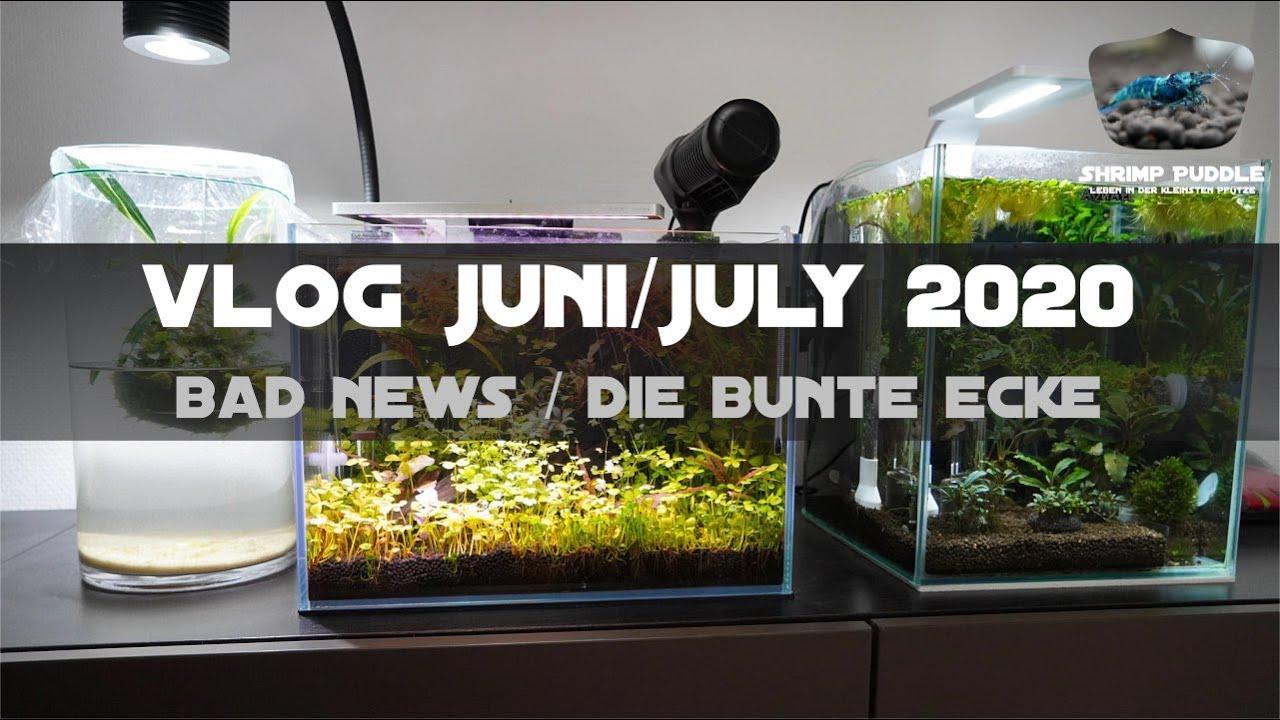 VLOG JUNI&JULY 2020 / SCHLECHTE NACHRICHTEN / BUNTE ECKE