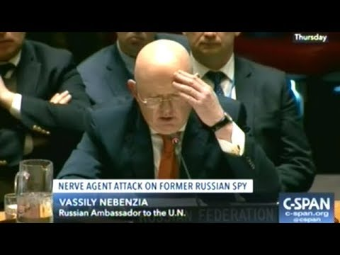 """Russia Says U.K. Nerve Agent Assassination Is A """"FAKE STORY"""" At U.N. Security Council Meeting"""